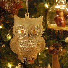 Owl Frosty 2015