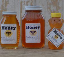 Honey Group Rasp 2016-11-19
